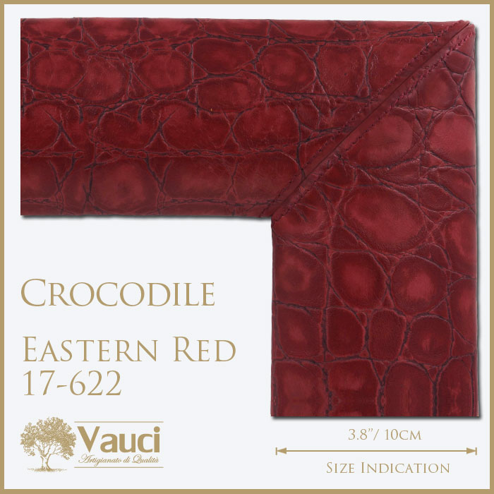 Crocodile-Eastern Red-17622