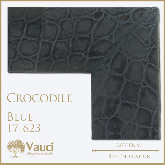Crocodile-Eastern Blue-17623